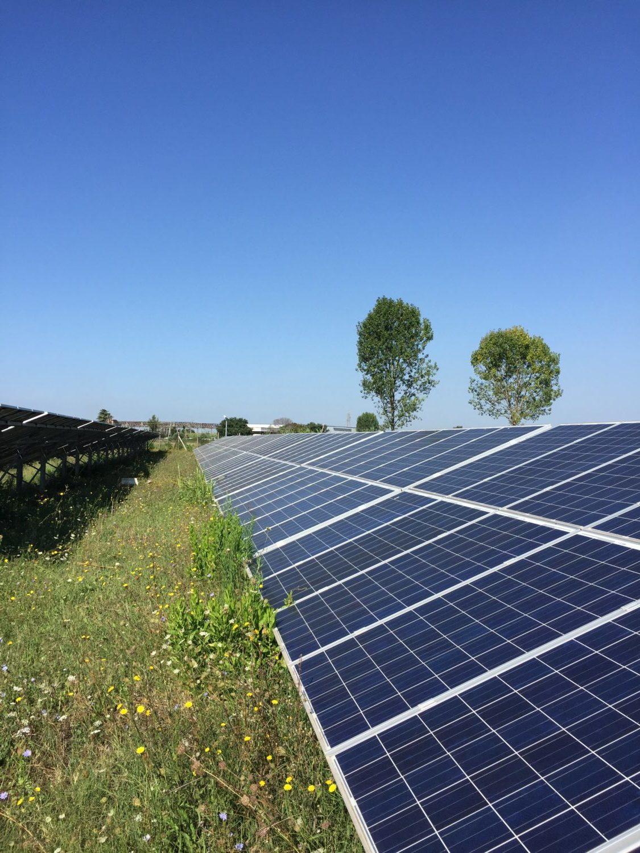 Nordic Solar Energy – Et energiselskab ejet af private